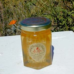 Why Honey Stays Preserved Indefinitely | Marshall's Farm Honey