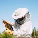 Beekeeping Offers New Source of Income for West Virginia Miners